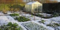 Весенние садовые хлопоты без химии